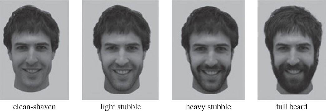 Różnice między zarostem i brodą, przykładowe zdjęcia z badania (Rob Brooks i Zinnia Janif)