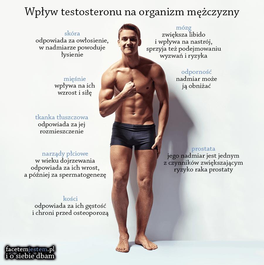 wplyw testosteronu na organizm mezczyzny