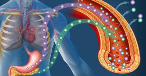 Działanie insuliny - praktyczne informacje